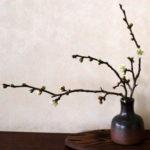 モダンな備前焼がほしい!伝統陶芸の里、岡山県備前市から人気の備前焼陶器を通販でお取り寄せ
